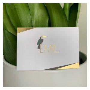 Geboortekaartje Emil