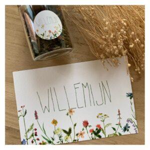 Geboortekaartje Willemijn
